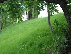 Защита газона от вытаптывания с помощью газонных решеток